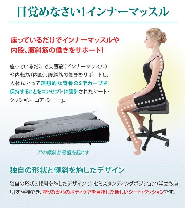 座っているだけでインナーマッスルや内股、腹斜筋の働きをサポート!