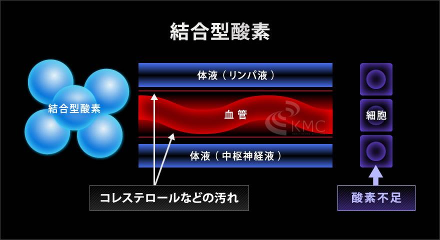 結合型酸素説明イラスト